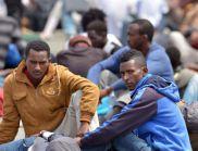 Във Великобритания глоби за над 4 млн. лири за превозвачи на имигранти