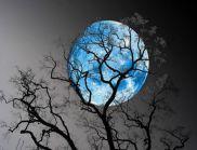 """""""Синя Луна"""" над България тази нощ! Има ли опасност за хората?"""