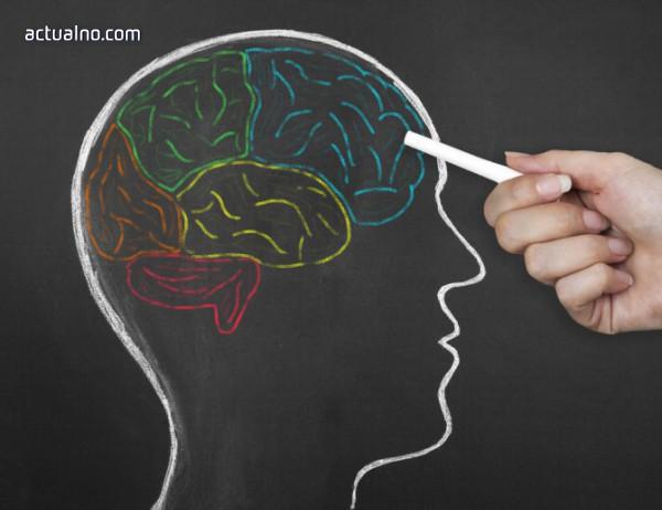 Болестта на Алцхаймер започва години преди първите симптоми