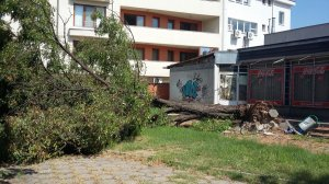 Пет дни никой в Асеновград не чисти след свирепа буря