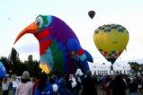 Фестивал на балоните в Канбера