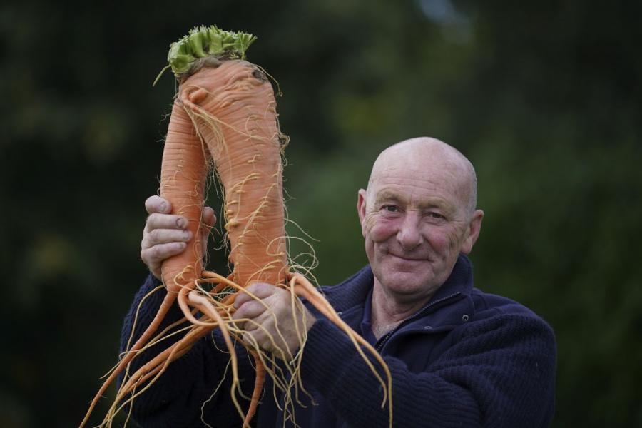 Гигантски зеленчуци