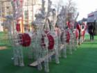 Варна е в красива премяна за празниците