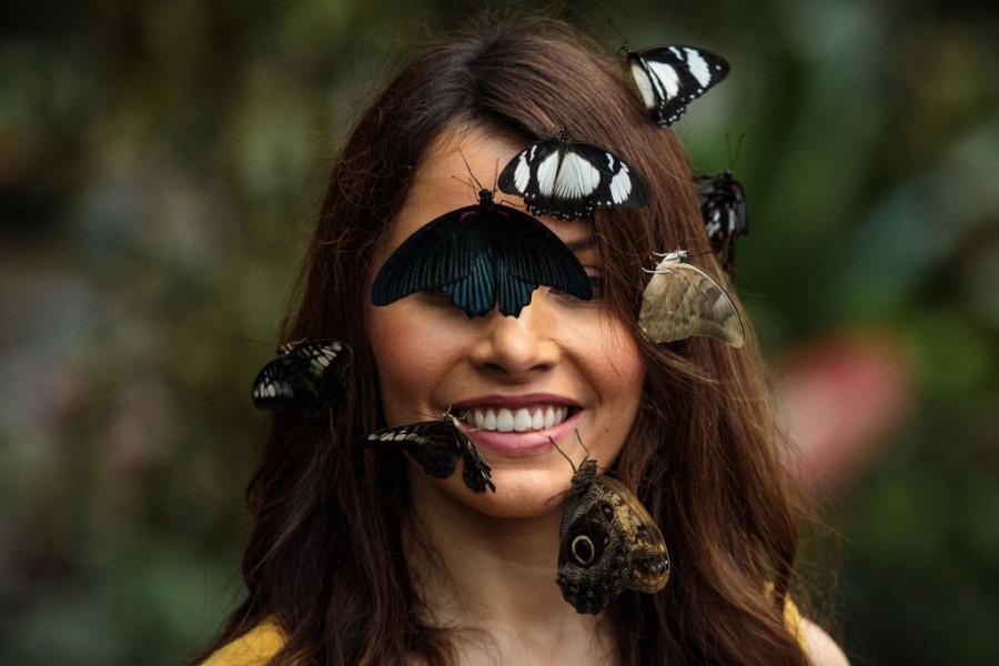 Пеперудите като аксесоар