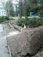 Буря отнесе покриви и дървета в Смолян