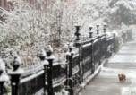 Априлски сняг падна в Ню Йорк