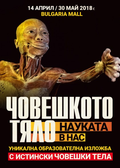 Изложба с истински човешки тела гостува в София от 14 април до 30 май