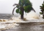 Какво остави ураганът
