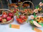 Празник на райската ябълка в Хрищени