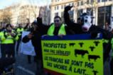 Полицията използва сълзотворен газ срещу протестиращите в Париж