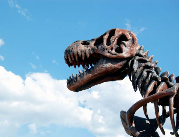photo of Откриха най-древните яйца на динозаври