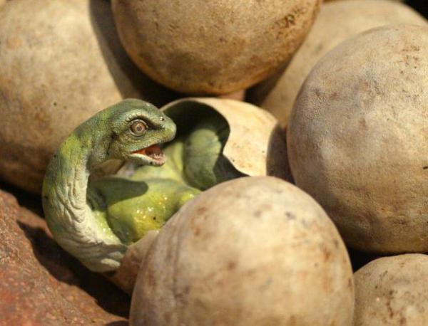 photo of Динозаврите изчезнали, защото снасяли яйца