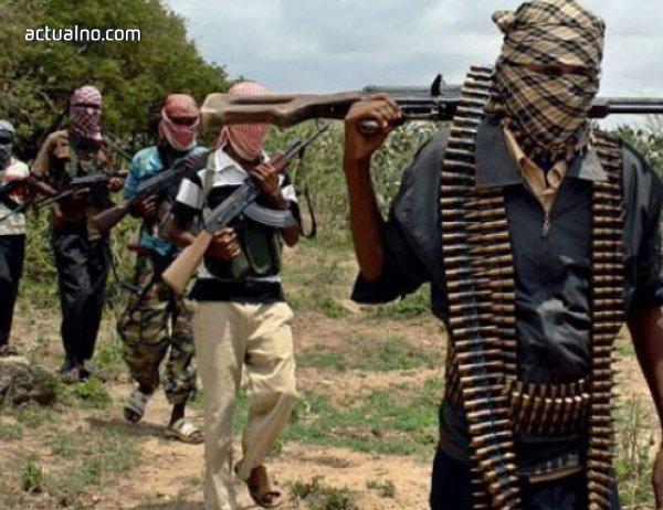"""photo of """"Боко харам"""" нападна нигерийски град, 14 души са убити"""
