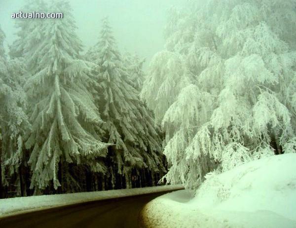 photo of Дават прохода Петрохан на концесия, пътят Видин - Ботевград гълта 1,6 млрд. лв.