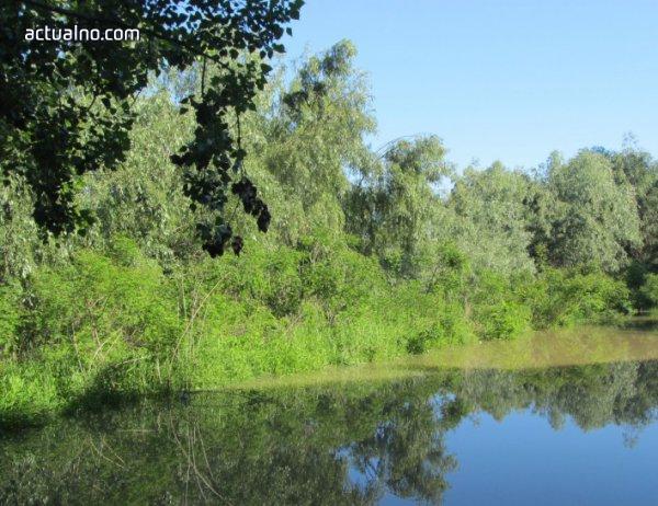 photo of Българските вековни букови гори вече са в списъка на ЮНЕСКО