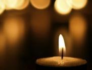 Почина котаракът Стъбс - почетният кмет на американския град Талкитна (СНИМКА)