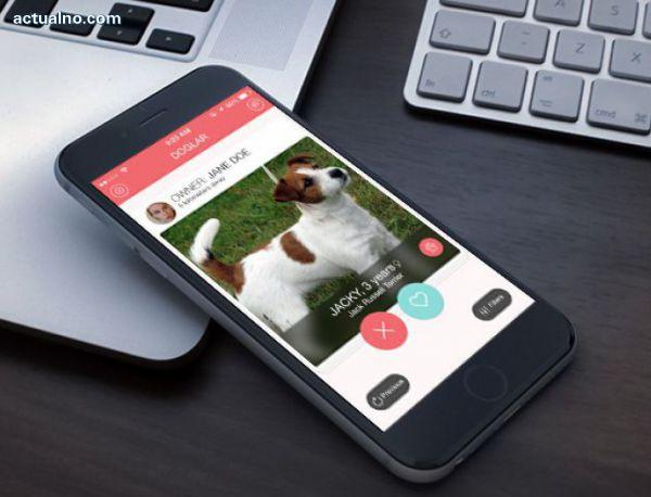 photo of Бълграско мобилно приложение среща собственици на домашни кучета