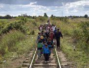 Сърбия: От България всеки ден влизат стотици мигранти
