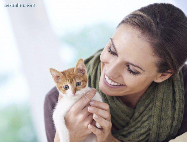 photo of Как и какво лекуват котките