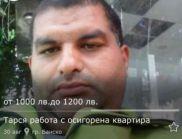 Ром счупи интернета със желанието си за работа