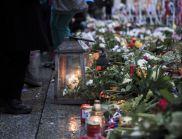 Учените търсят помощ в причините за парижките терористични актове