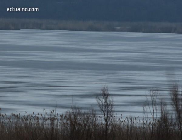 """photo of 8 морски орли са забелязани в резерват """"Сребърна"""""""