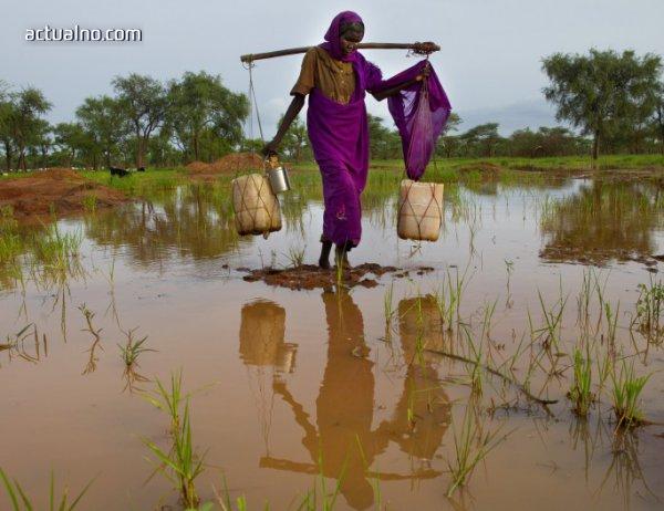photo of Африка - богата, но разграбена и на ръба на бедността