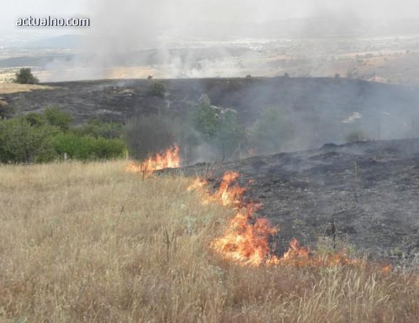 photo of Повече от 2300 горски служители са в готовност за реакция при горски пожари