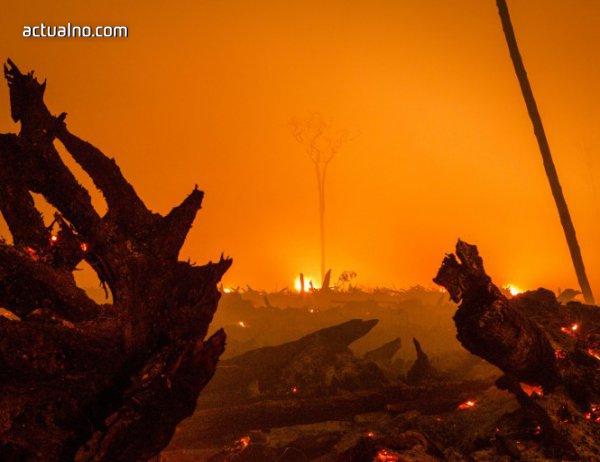 photo of Броят на загиналите при горските пожари в Португалия достигна до 62 души