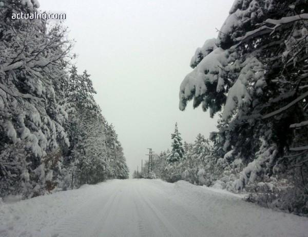 """photo of Опесъчават планинските пътища в парк """"Витоша"""""""