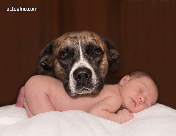 photo of Домашните любимци намаляват алергиите и затлъстяването при бебетата