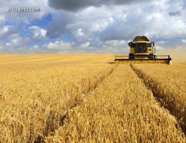 photo of С регистрация на фиктивни фирми чужденци купуват земеделска земя у нас