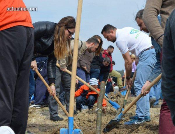 photo of Доброволци засаждат 3 000 дръвчета в Западен парк