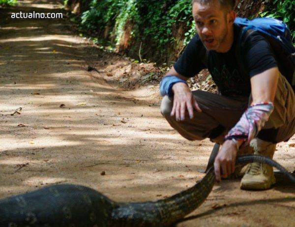 """photo of Близки среща с индийска кобра в епизод 6 на """"Диви същества с Доминик Монахан"""" по VIASAT Nature"""