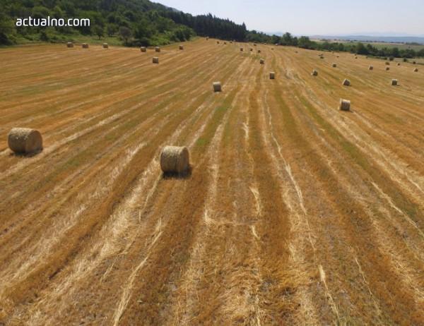 photo of Зърнопроизводителите в Генерал Тошево готови да блокират гранични пунктове и София заради добива на газ