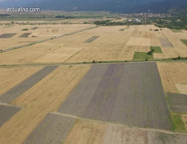 photo of Словакия: Мръсната битка за нивите