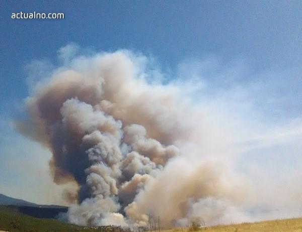 photo of Калифорния обяви извънредно положение заради горските пожари