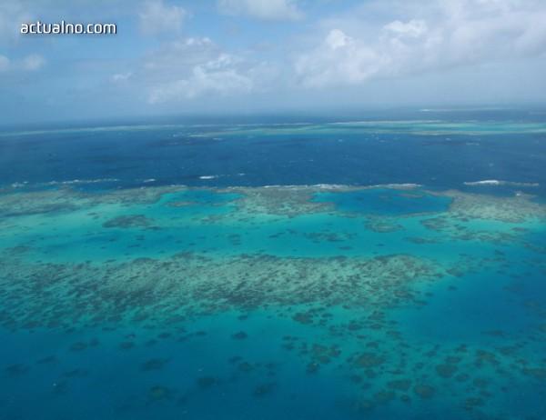 photo of Българче със световно отличие за най-добро есе за опазване на океаните