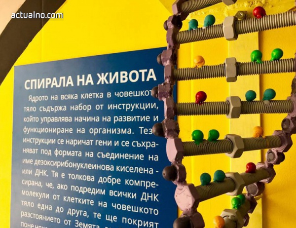 photo of Уникален научен подлез заживява свой живот в градската среда на София