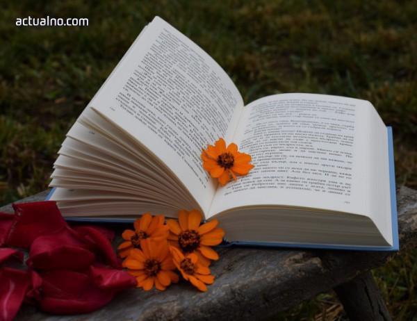 photo of 7 кратки книги, които са по-ценни от магистратурата