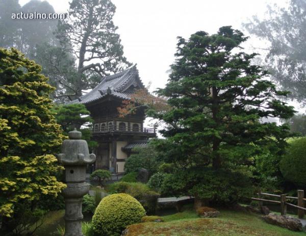 photo of Приказният свят на Японската чаена градина в Сан Франциско (СНИМКИ)