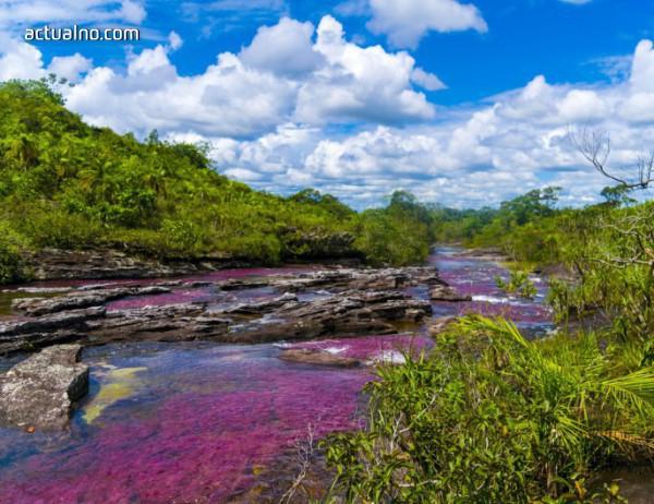 photo of Вълшебната река, която тече в пет цвята (СНИМКИ+ВИДЕО)