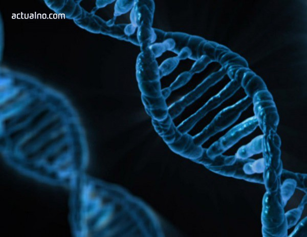 photo of Google отдаде почит на Роберт Кох - един от основателите на микробиологията