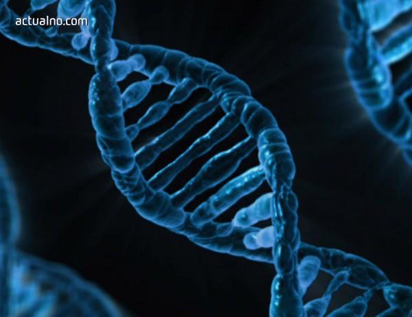 photo of Няма човешко ДНК в генома на последните неандерталци на Земята