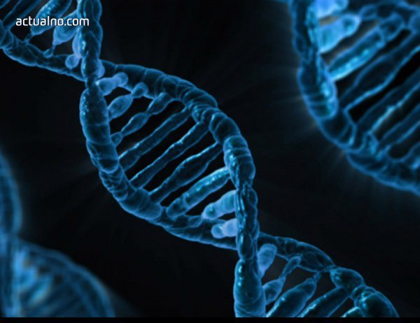 photo of Учени се опитват да клонират кон отпреди 40 000 г.