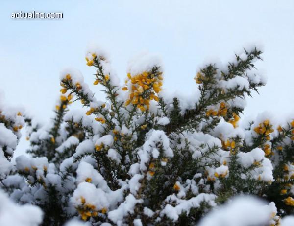 photo of Зимата се завръща, започват валежи и застудяване