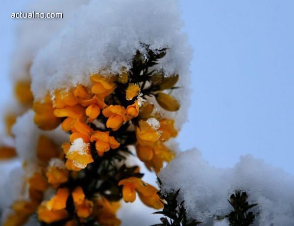 photo of Прогноза за времето - 9 февруари (петък)