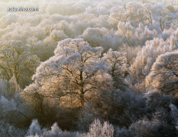photo of Прогноза за времето - 13 януари (събота)