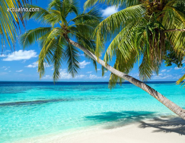 photo of Бахамите - там, където мечтите стават реалност