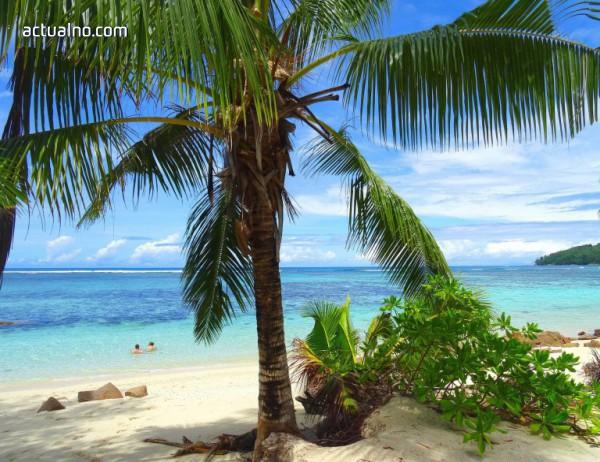 photo of Райски острови и изчезващи гиганти (СНИМКИ)